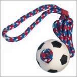 Wurfspielzeug für den Sport das Hundespielzeug für vitale Hunde